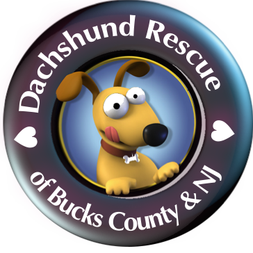 https://doxierescue.com/wp-content/uploads/2020/12/rescue-2.png